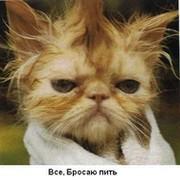 Андрей Кульгускин on My World.