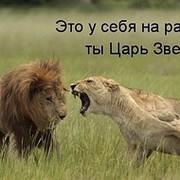 ЛЬВИЦА - ЦАРИЦА on My World.