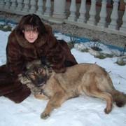 Елена Безуглова on My World.